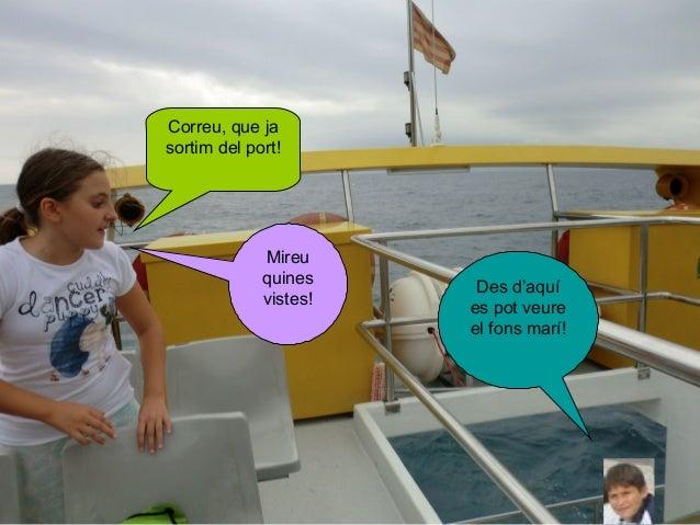 Correu, que ja sortim del port!  Mireu quines vistes!  Des d'aquí es pot veure el fons marí!