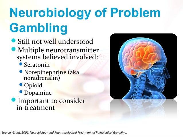 Taking action on problem gambling 2006 jugar casino online gratis tragamonedas