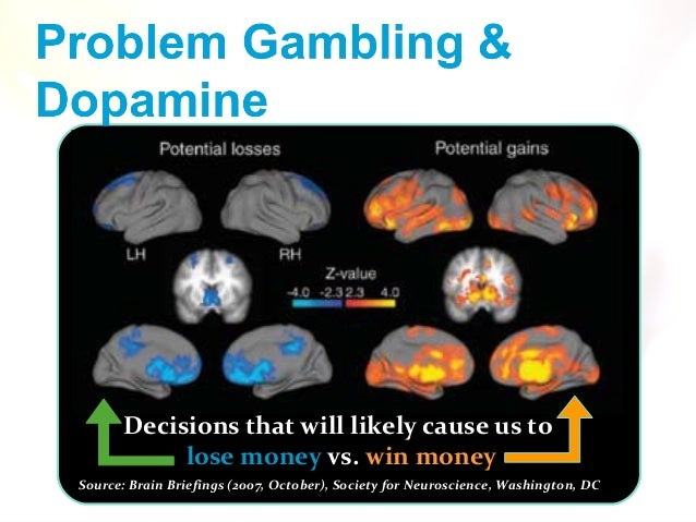 Neurobiology of gambling behaviors casino online spyware