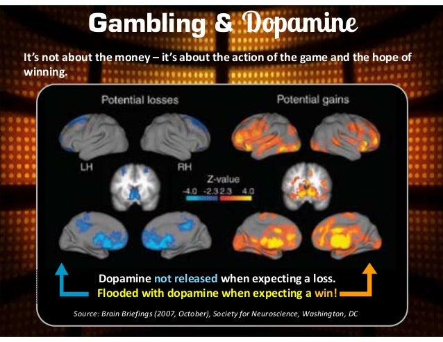 How does gambling addiction affect the brain novelty slot machines