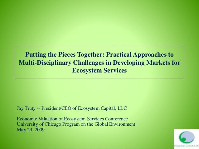 Putting the Pieces Together: Practical Approaches to Multi-Disciplinary Challenges in Developing Markets for Ecosystem Ser...