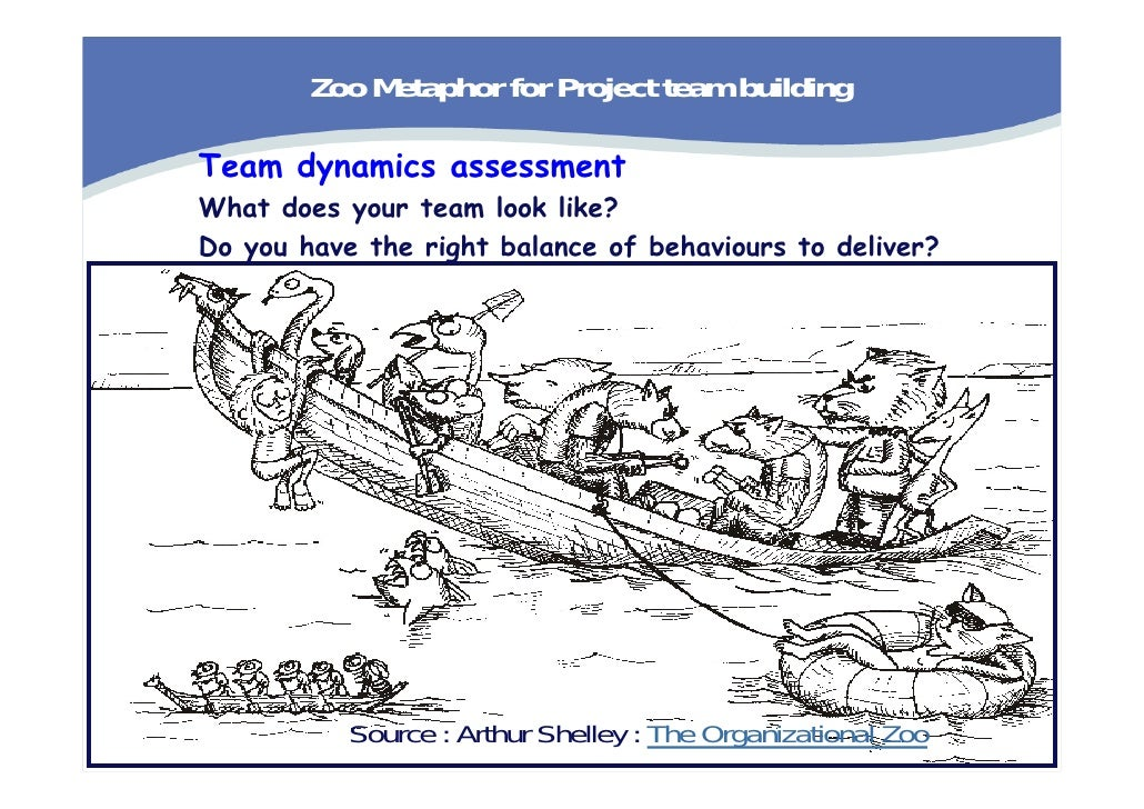 Project management in team dynamics