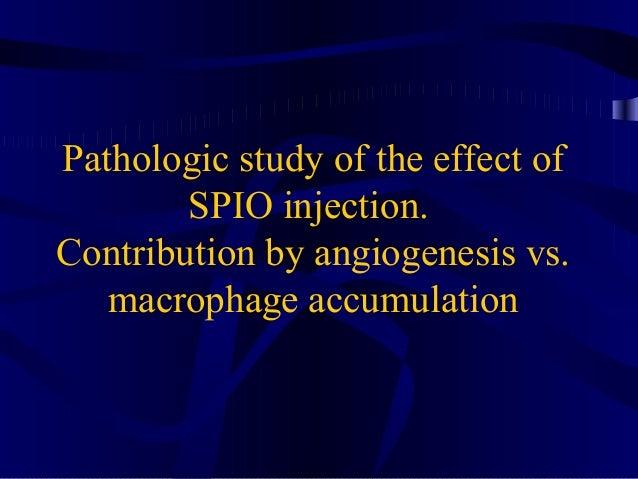 Pathologic study of the effect of SPIO injection. Contribution by angiogenesis vs. macrophage accumulation