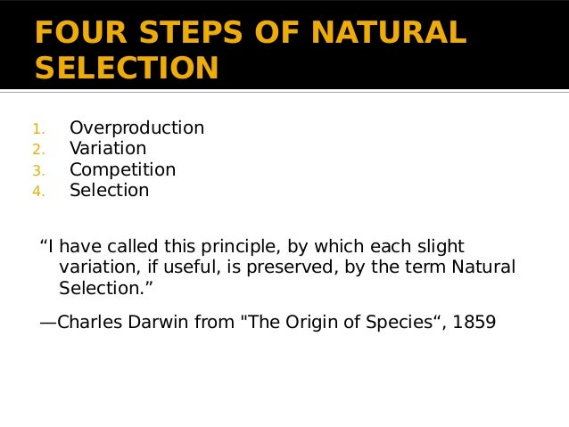 Charles Darwin S Principle Of Natural Selection Variation