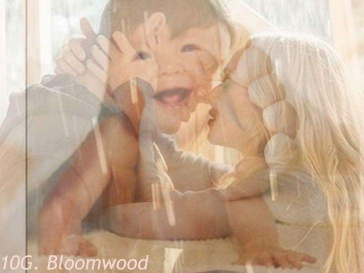Update 83 fam. bloomwood.