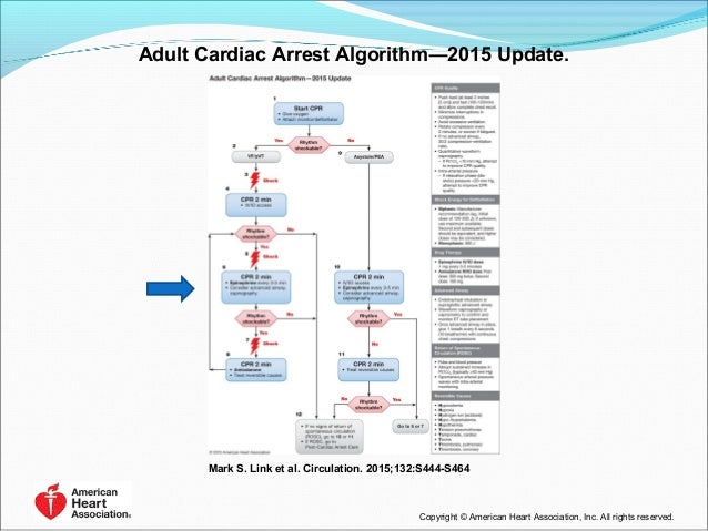 Updates In 2015 Aha S Cpr Ecc