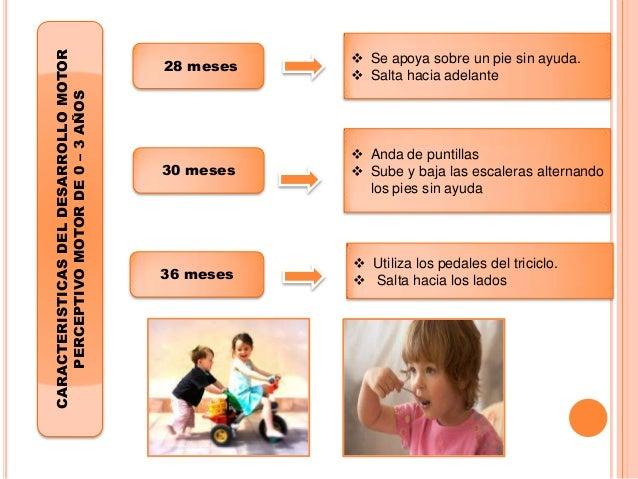 Upel Psicologia Evolutiva Primera Infancia De 0 A 3 Años