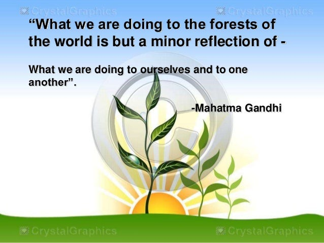 """""""What we are doing to the forests of  the world is but a minor reflection of -  What we are doing to ourselves and to one ..."""