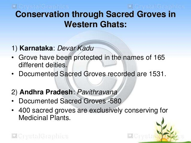 conservation of western ghats Abraham s, augustine j, thomas td, (2012) asymbiotic seed germination and in vitro conservation of coelogyne nervosa a rich an endemic orchid to western ghats.