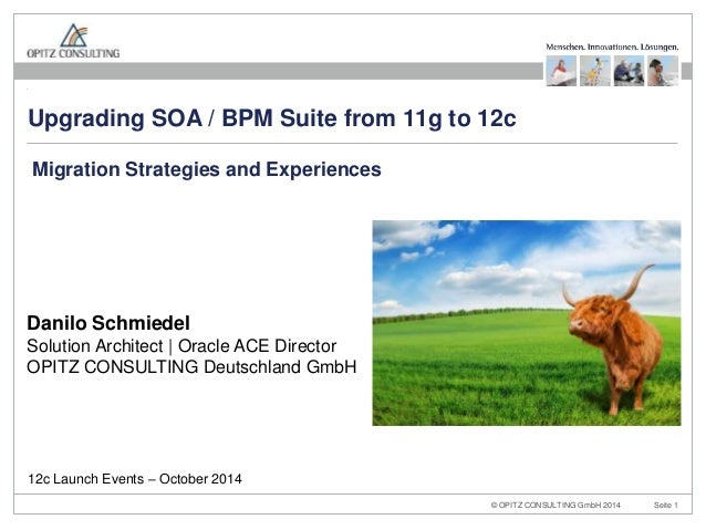 Upgrading SOA / BPM Suite from 11g to 12c  Migration Strategies and Experiences  Danilo Schmiedel  Solution Architect | Or...