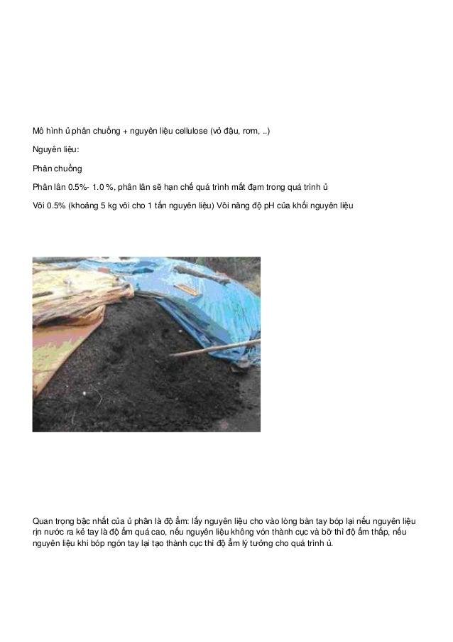 Mô hình ủ phân chuồng + nguyên liệu cellulose (vỏ đậu, rơm, ..) Nguyên liệu: Phân chuồng Phân lân 0.5%- 1.0 %, phân lân sẽ...