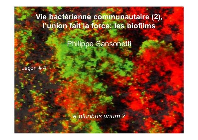 Vie bactérienne communautaire (2), l'union fait la force: les biofilms Philippe Sansonetti Leçon # 4 e pluribus unum ?
