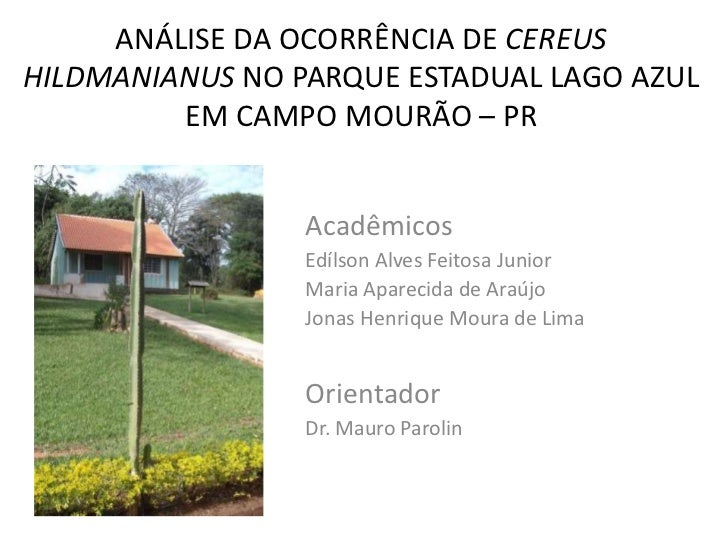 ANÁLISE DA OCORRÊNCIA DE CEREUSHILDMANIANUS NO PARQUE ESTADUAL LAGO AZUL         EM CAMPO MOURÃO – PR                 Acad...
