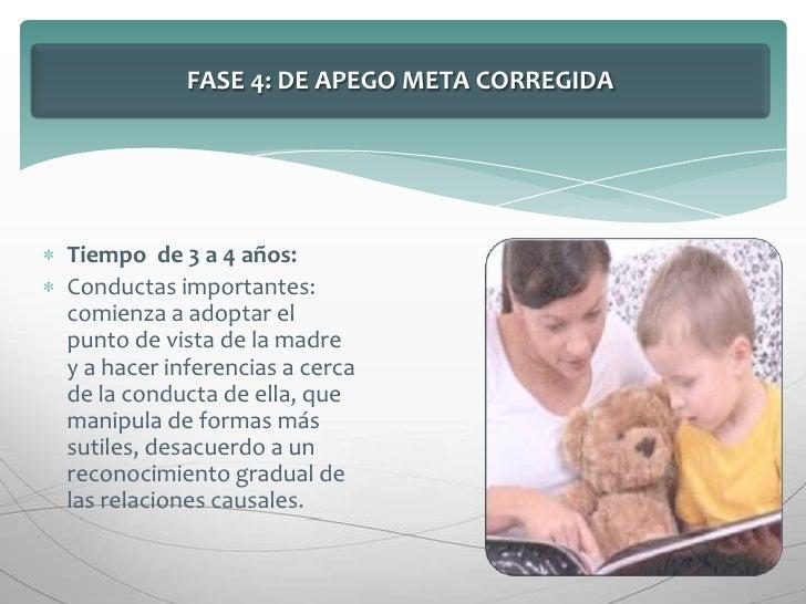 FASE 4: DE APEGO META CORREGIDA<br />Tiempo  de 3 a 4 años:<br />Conductas importantes: comienza a adoptar el punto de vis...