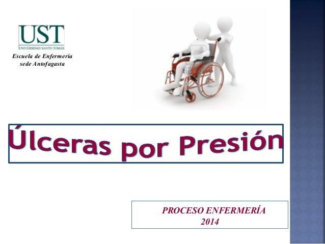 PROCESO ENFERMERÍA 2014 Escuela de Enfermería sede Antofagasta