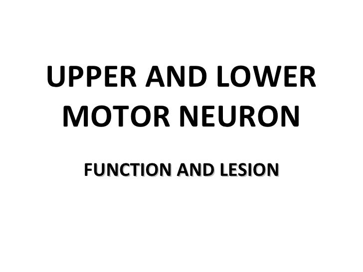UPPER AND LOWER MOTOR NEURON  FUNCTION AND LESION