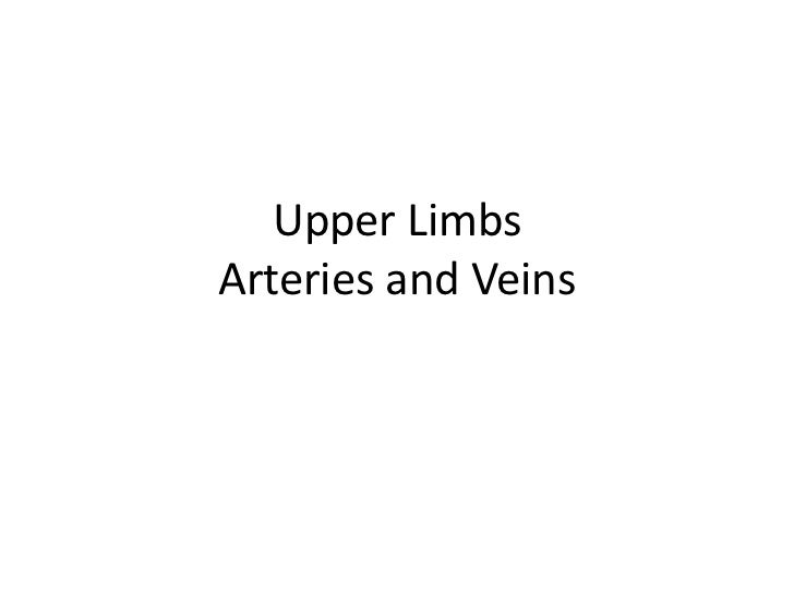 Upper LimbsArteries and Veins<br />