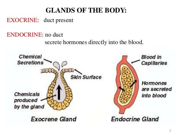 classification of salivary gland disorders pdf