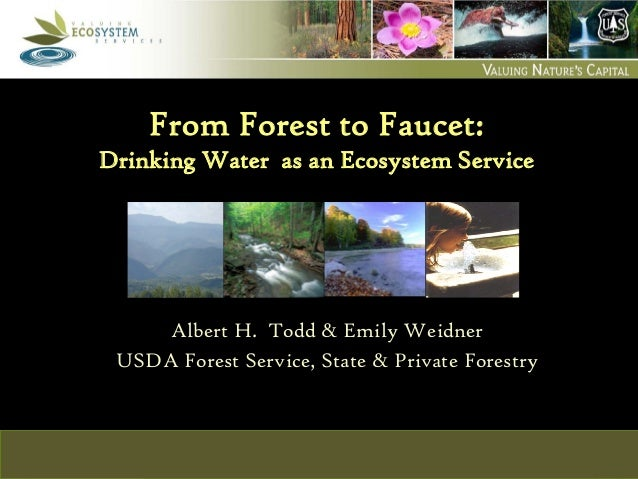 USDA Forest Service  S&PF, Cooperative Forestry  Ecosystem Services and Markets  From Forest to Faucet: Drinking Water as ...