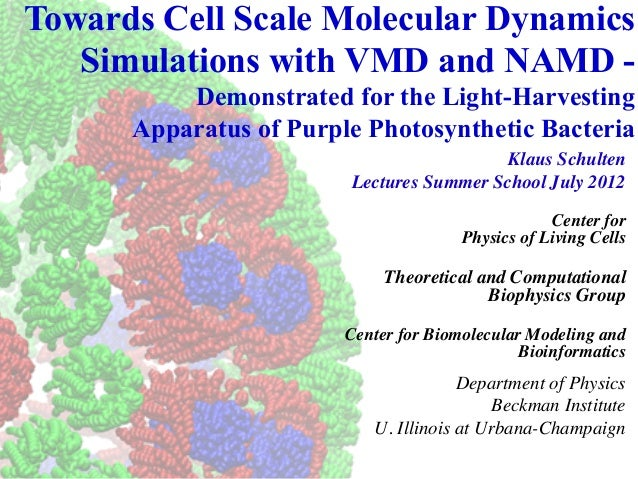 Towards Cell Scale Molecular Dynamics   Simulations with VMD and NAMD -          Demonstrated for the Light-Harvesting    ...