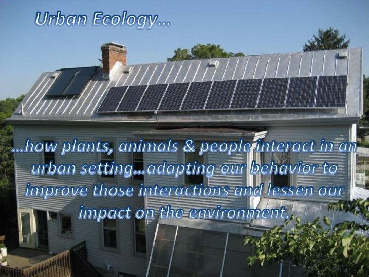 Urban Ecology… <br />…how plants, animals & people interact in an urban setting…adapting our behavior to improve those int...