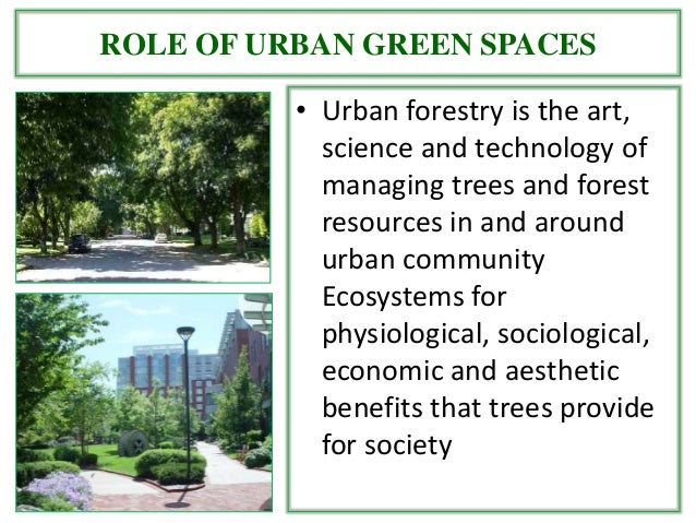 the aesthetic criteria and tree selection for the urban environment Issuu is a digital publishing platform that makes it simple to  plant selection criteria for landscaping in  plants in urban environment, planting.