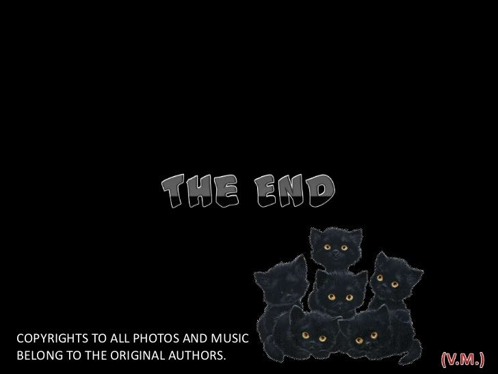 The End<br />COPYRIGHTS TO ALL PHOTOS AND MUSIC <br />BELONG TO THE ORIGINAL AUTHORS.<br />(V.M.)<br />