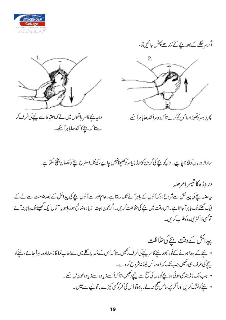 Islamic Sexuality In Urdu