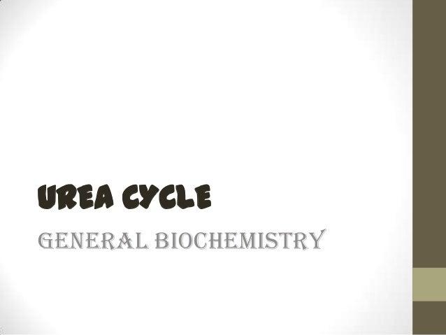 UREA CYCLE General Biochemistry