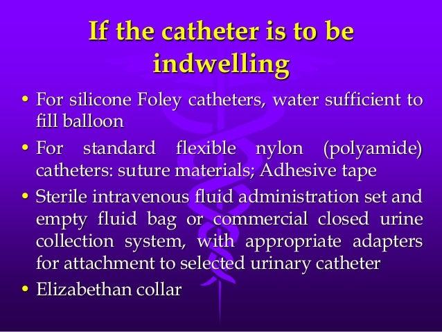 Urethral Catheterization Male Dog