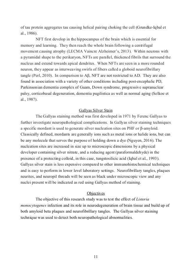 beautiful house essay kannada language
