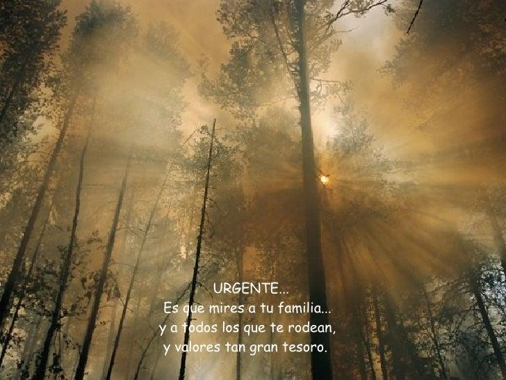 URGENTE...  Es que mires a tu familia...  y a todos los que te rodean,  y valores tan gran tesoro.