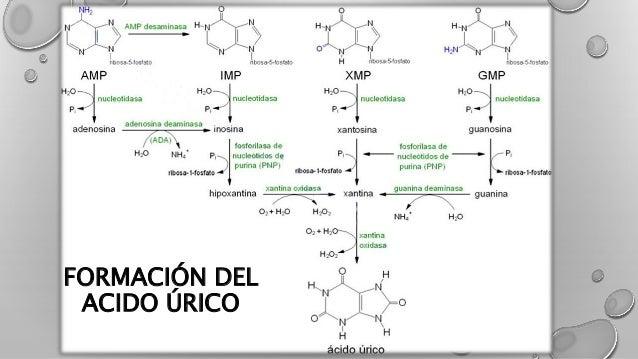 vinagre de manzana es bueno para el acido urico alimentos y bebidas prohibidos para el acido urico que es bueno para quitar el dolor de acido urico