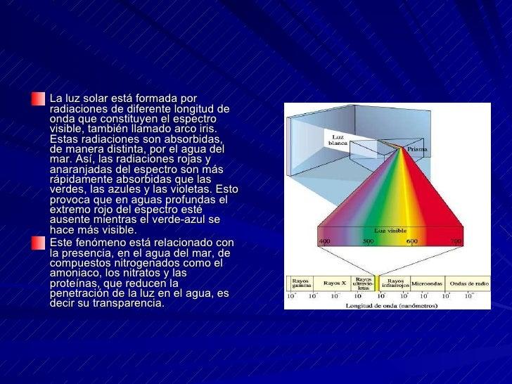 <ul><li>La luz solar está formada por radiaciones de diferente longitud de onda que constituyen el espectro visible, tambi...