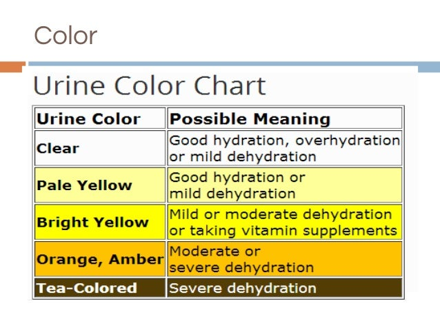 Urine Analysis.Pptx