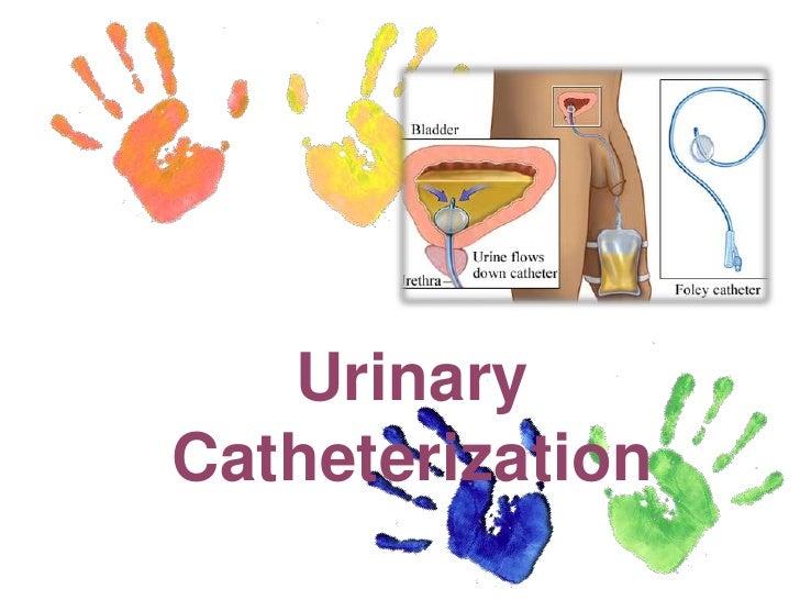 urine and catheter management activities Your role in urinary catheter management h  relating to urinary catheter care management urinary catheters  undertake work activities (skills for health, 2007.