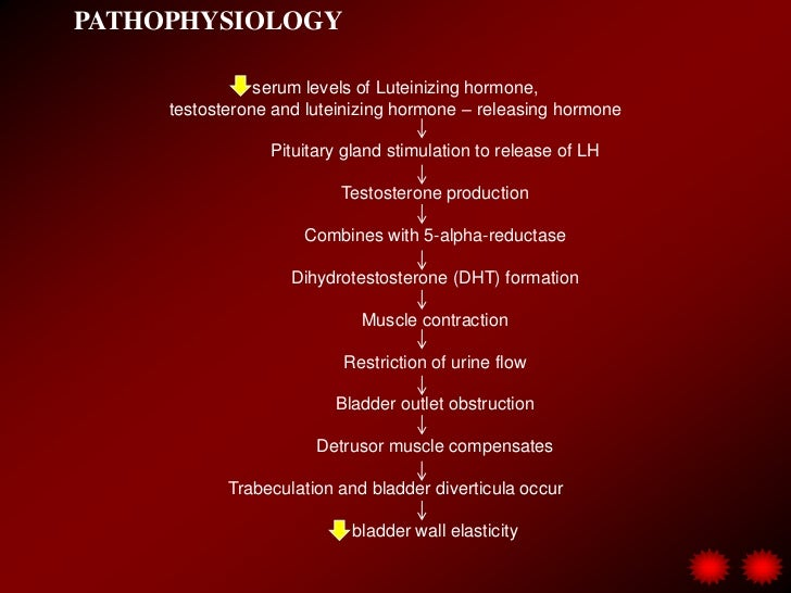 Urinary disorders  watson (2) Slide 3