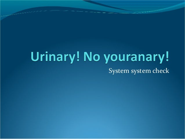 System system check