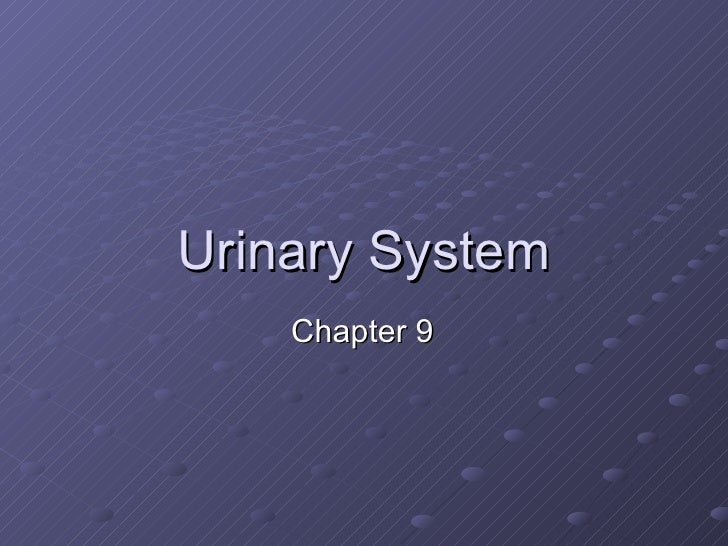 Urinary System Chapter 9