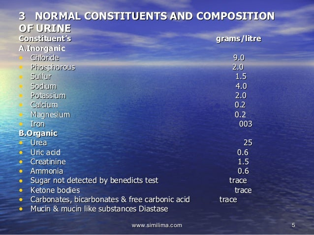Urine Analysis (1/3): Sediment and Dipstick Examination