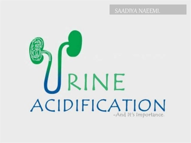 Urine acidification and it's importance