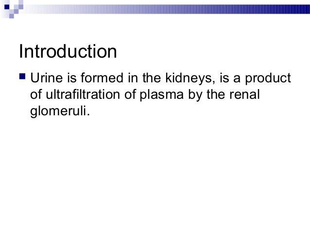 Urine analysis Slide 2