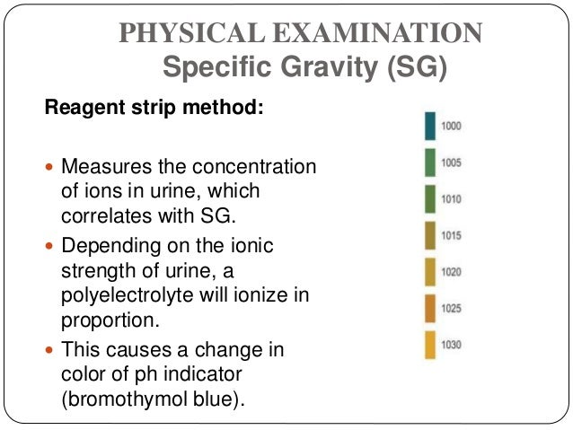 PHYSICAL EXAMINATION Specific Gravity (SG) Reagent strip method:  Measures the concentration of ions in urine, which corr...