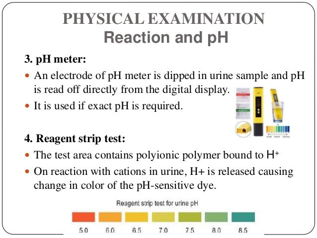 PHYSICAL EXAMINATION Reaction and pH 3. pH meter:  An electrode of pH meter is dipped in urine sample and pH is read off ...