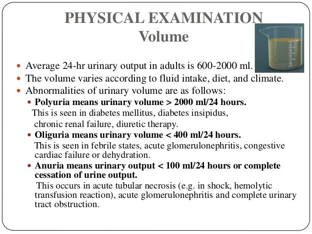 PHYSICAL EXAMINATION Volume  Average 24-hr urinary output in adults is 600-2000 ml.  The volume varies according to flui...