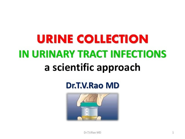 URINE COLLECTION IN URINARY TRACT INFECTIONS a scientific approach Dr.T.V.Rao MD  Dr.T.V.Rao MD  1