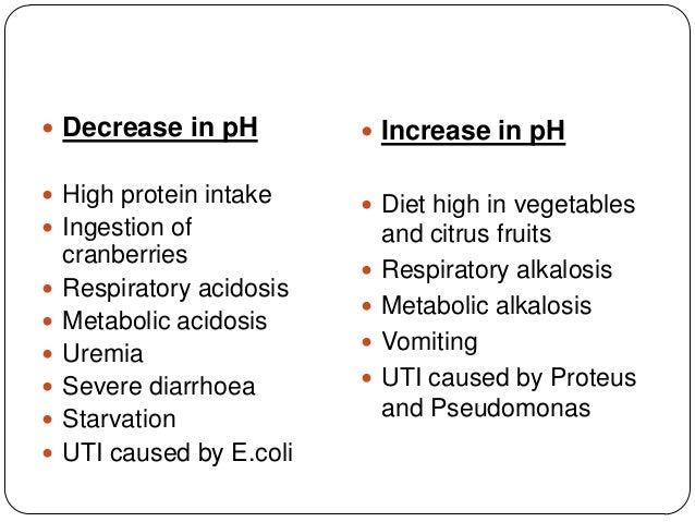 protein in urine causes diet