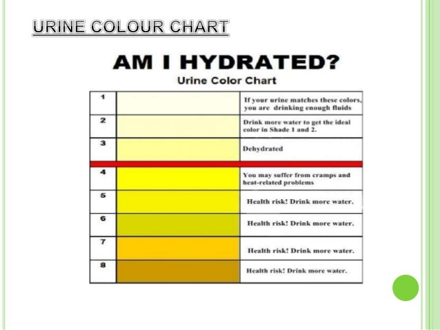dark orange urine analysis - 638×479