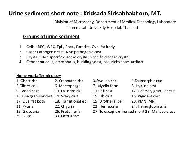 Urine sediment 55/Kridsada31