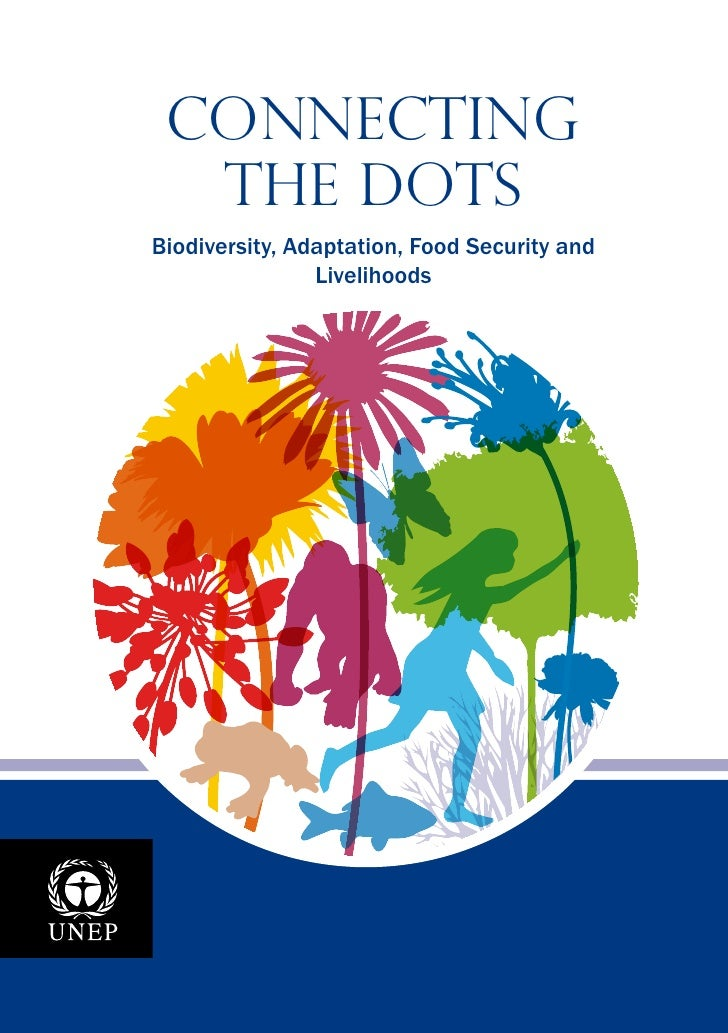 Connecting  the DotsBiodiversity, Adaptation, Food Security and                Livelihoods                                ...